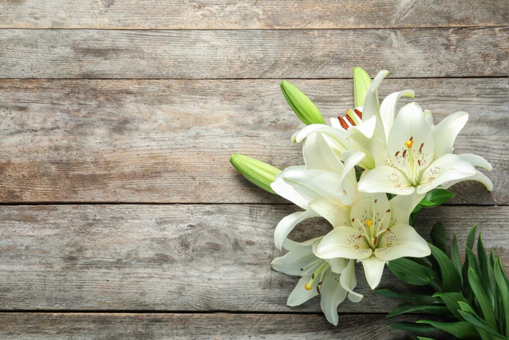 , The Most Popular Funeral Flowers and What They Mean